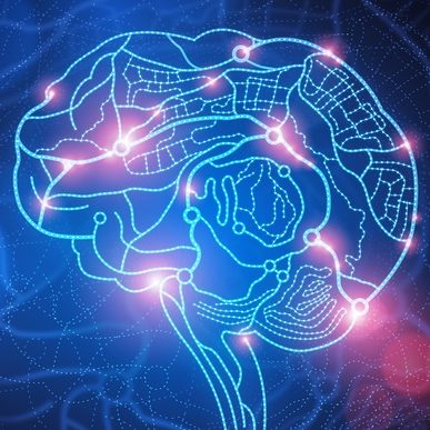 Permalink to:Исследования мозга и личности, перспективы оцифровки сознания