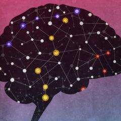 Исследования мозга и сознания