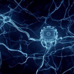 наноробот в мозгу